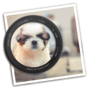 Skapa fokuspunkter i dina bilder