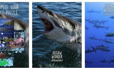 Gratistipset: Pussla ihop hajar